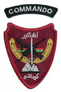 Afghan Special Operations Command Patch