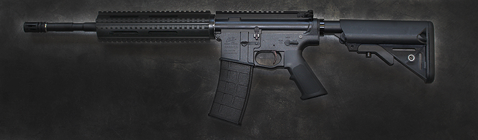 Airsoft Systems ASAR 15