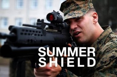 Summer Shield 2014